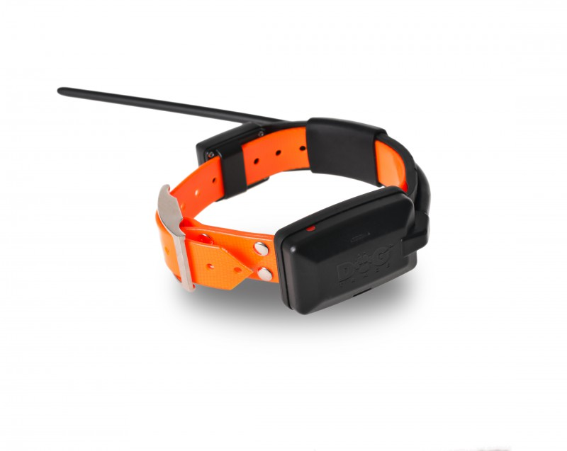 DOG GPS X20 orange